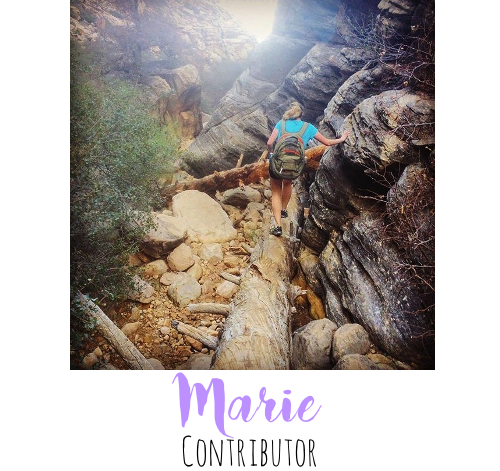 marie_contributor_tag